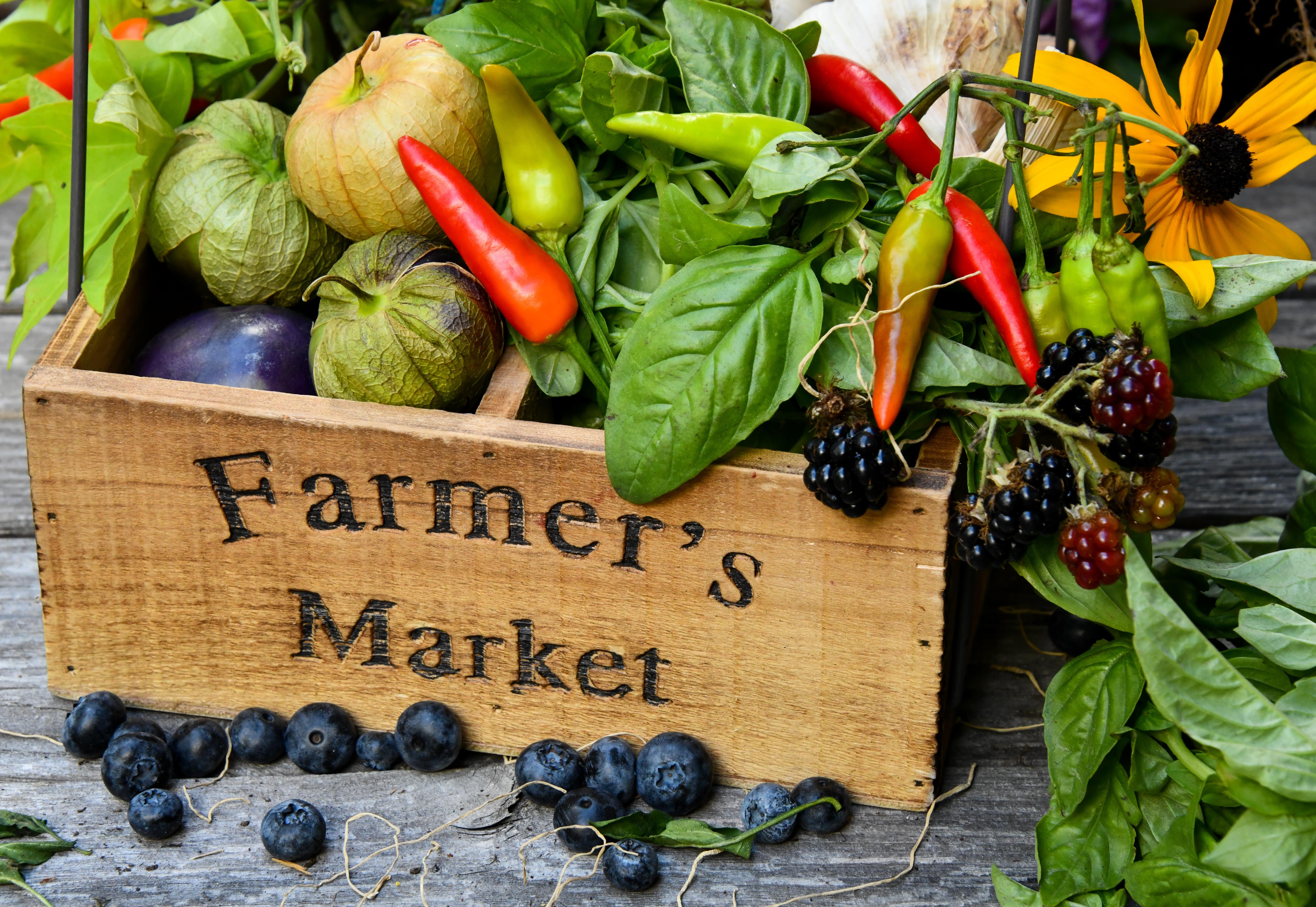 Farmers market Alabama