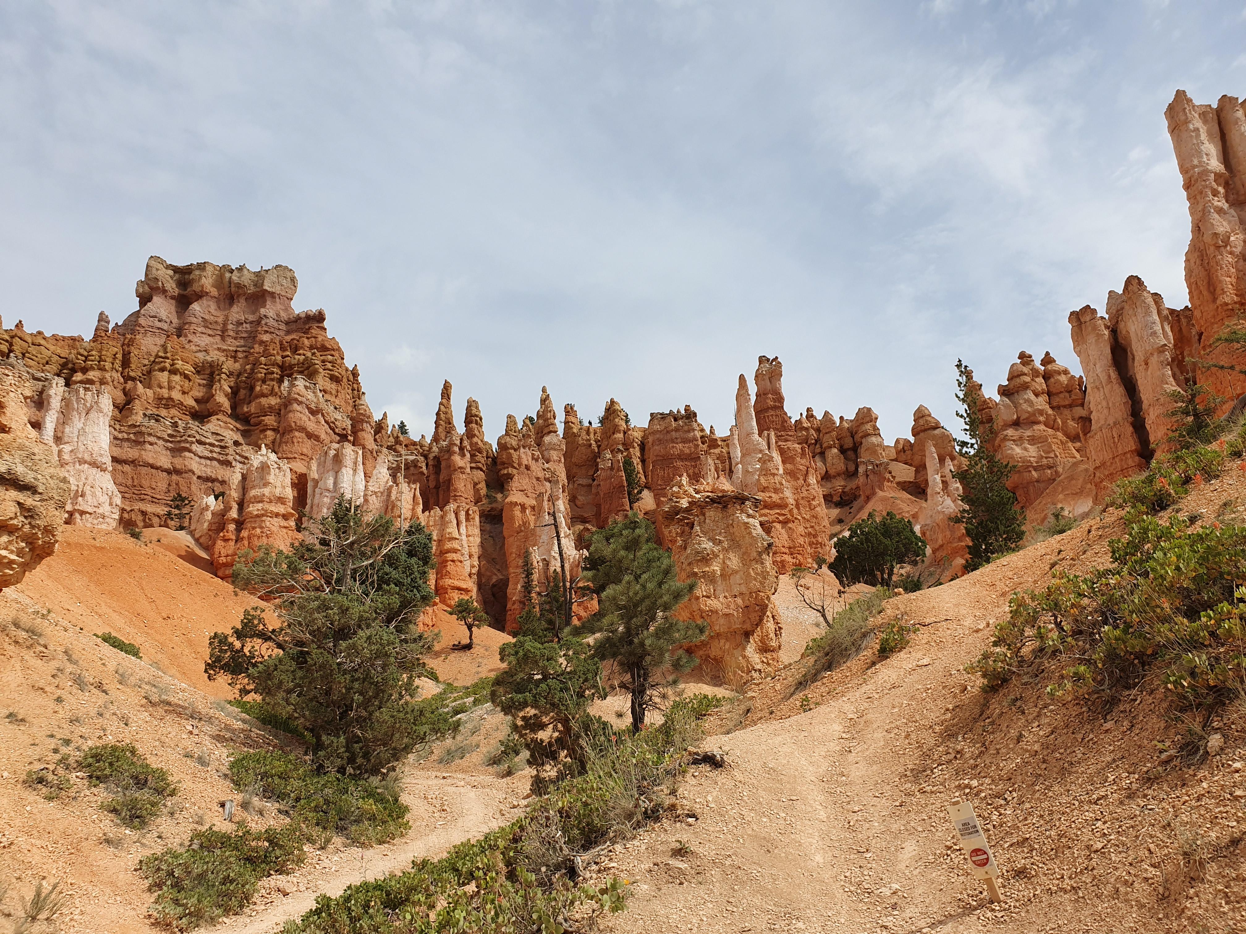 Bryce Canyon bezoeken Verenigde Staten rondreis