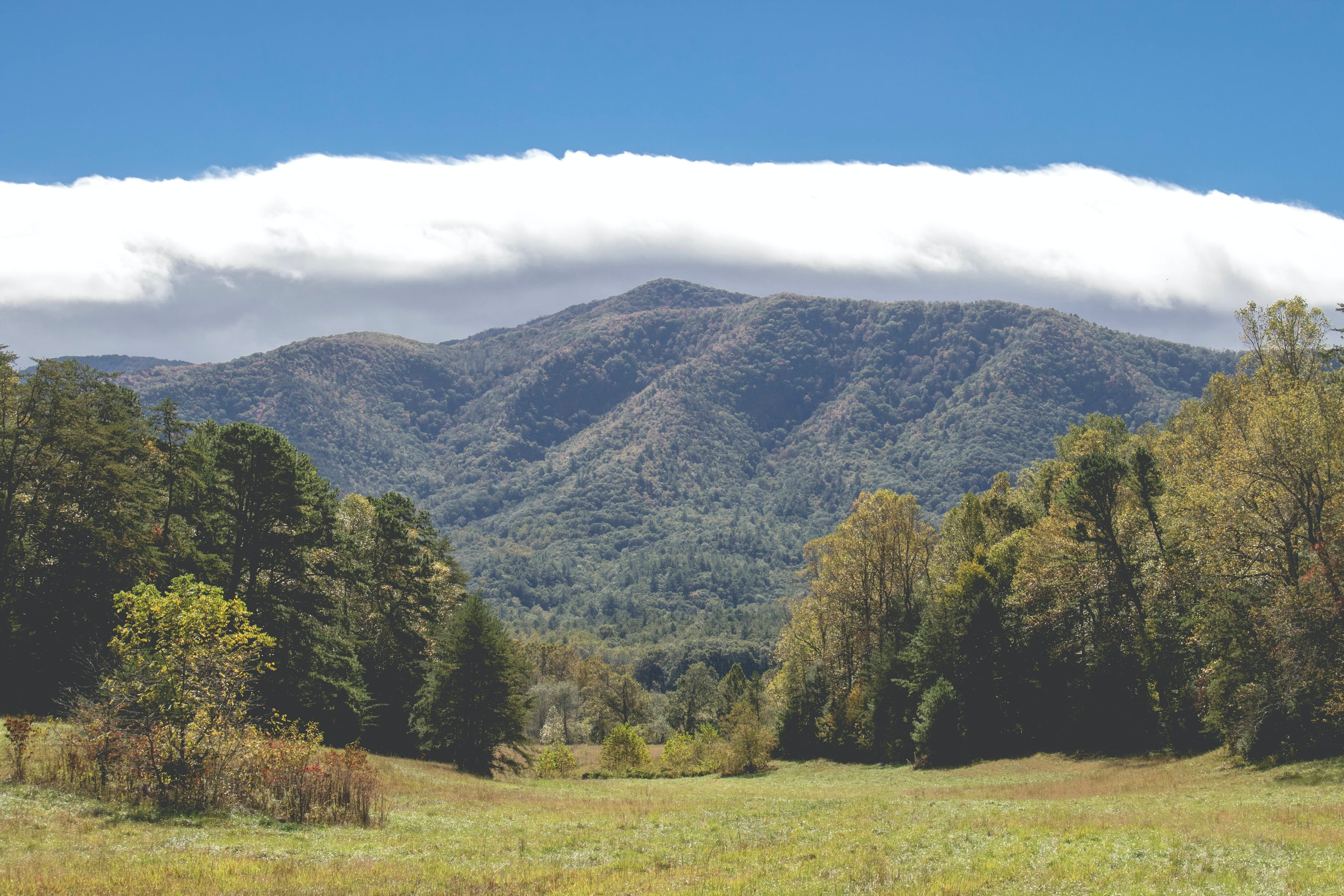 Cades Cove Great Smoky Mountains NP
