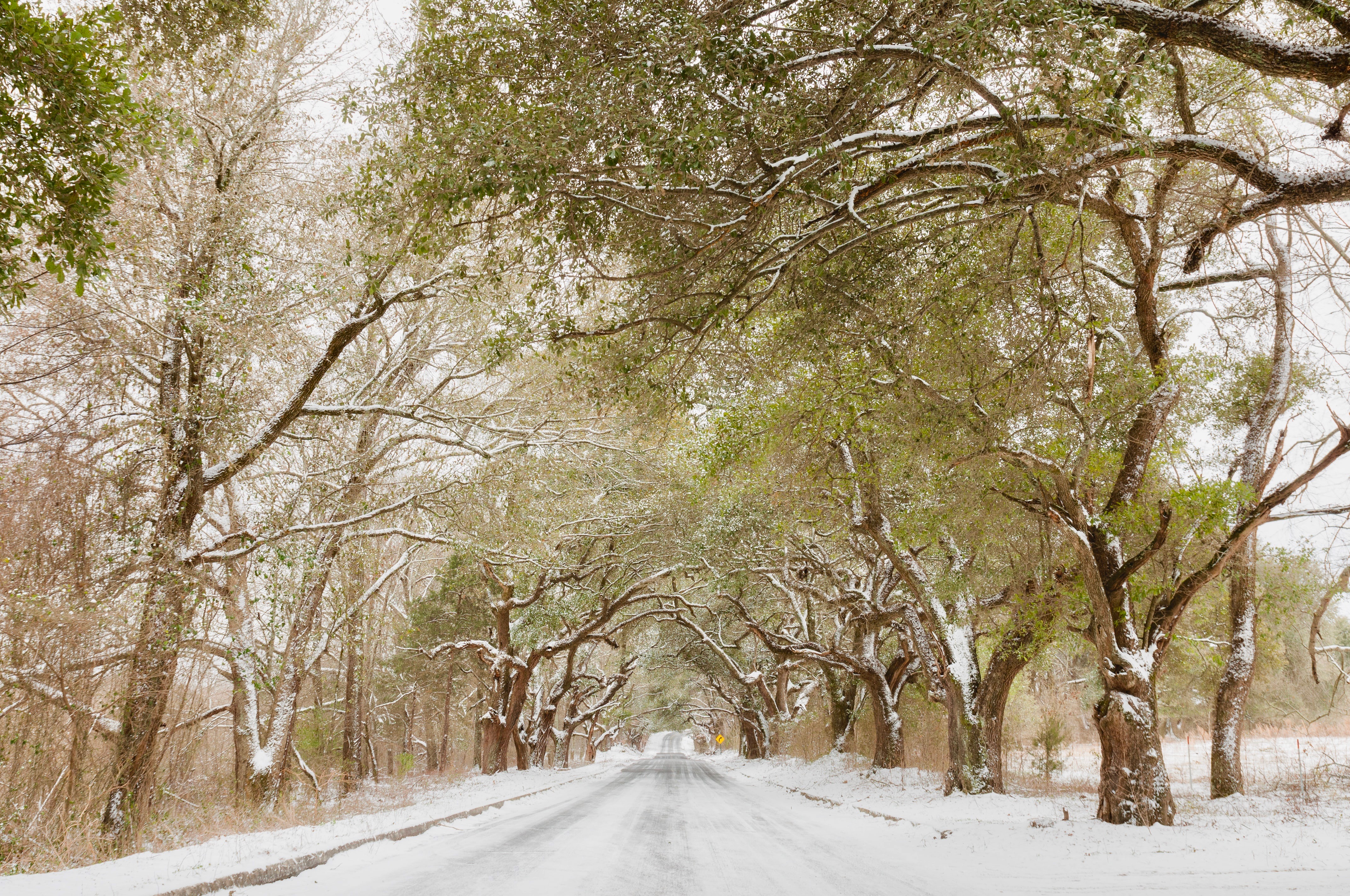 mississippi jackson winter
