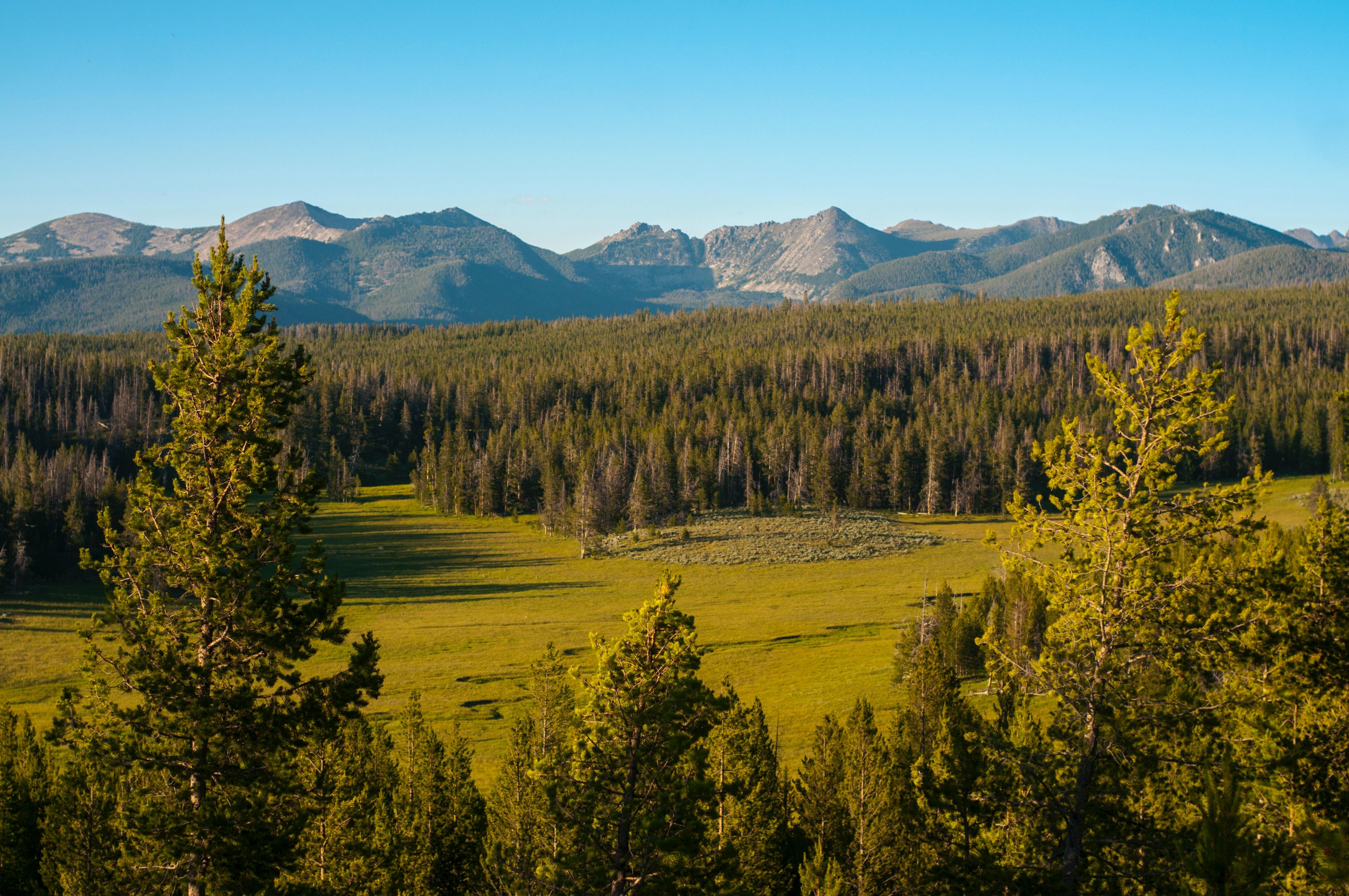 natuur montana