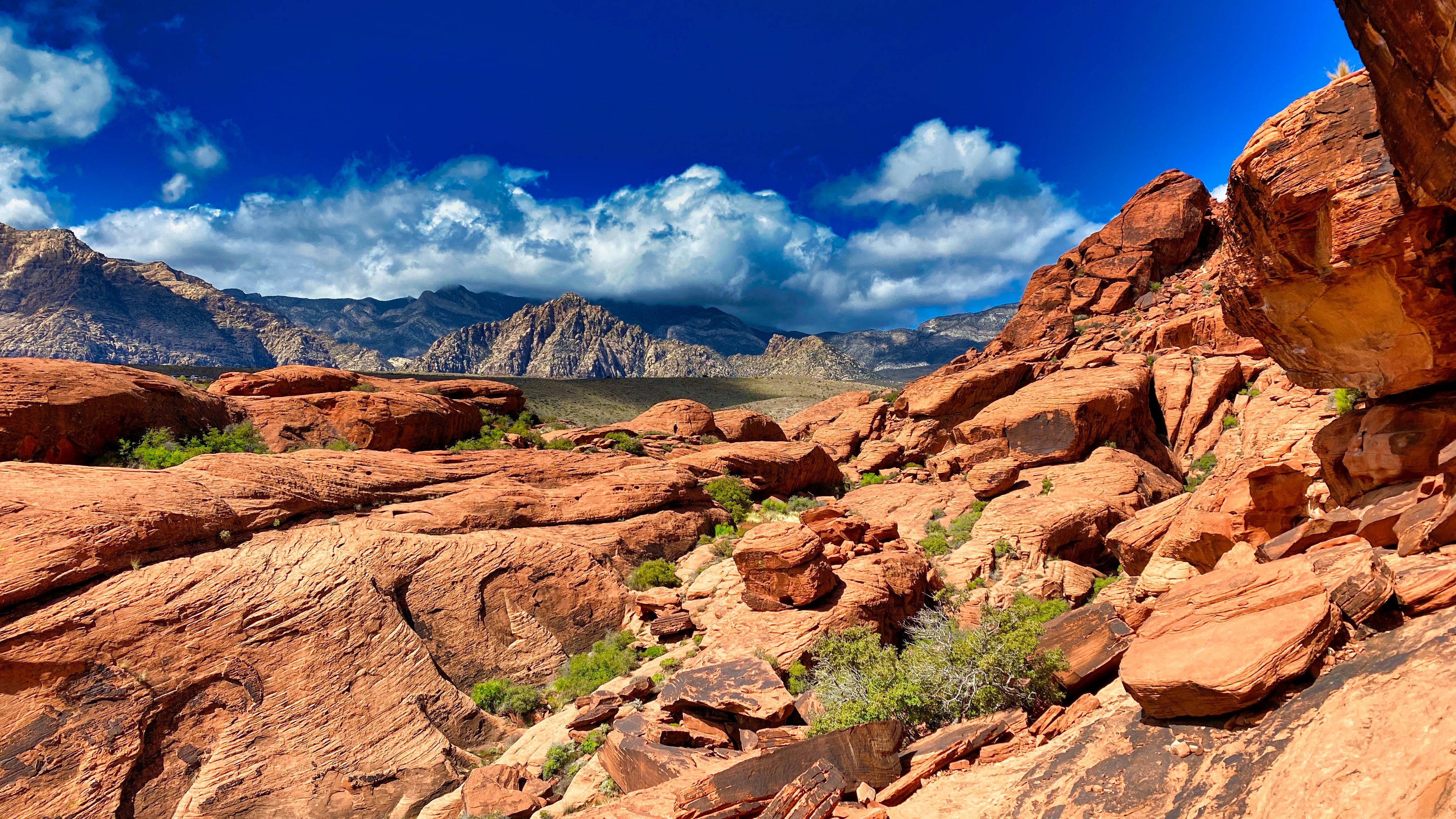 Red Rock Canyon reizen Nevada