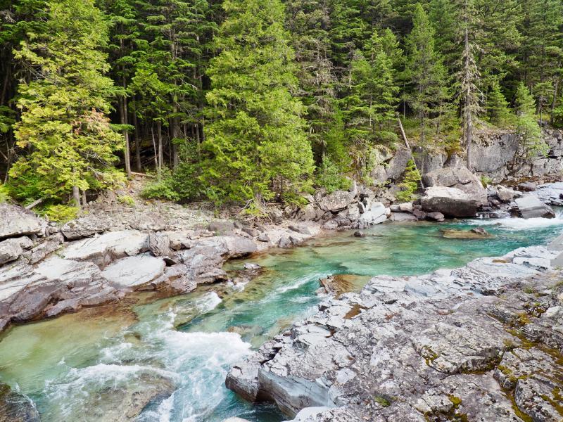 Gezinsrondreis Canada Amerika road trip