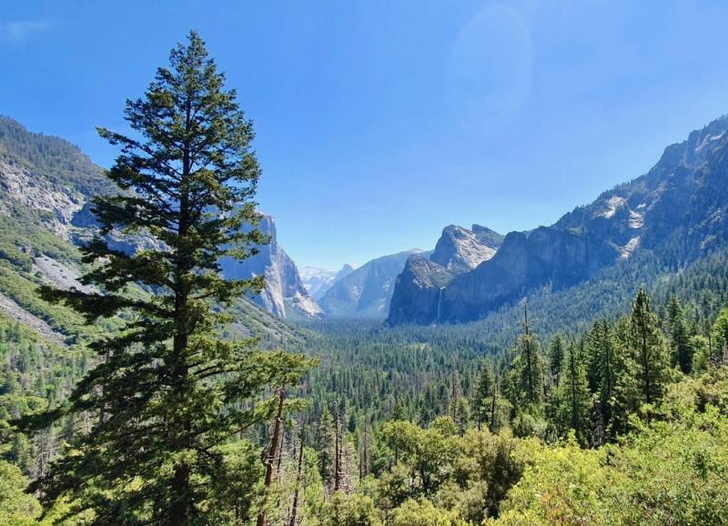 Nationale parken Californie