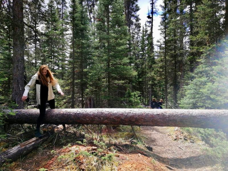 Natuur VS en Canada