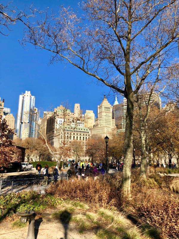 New York vanuit Central Park