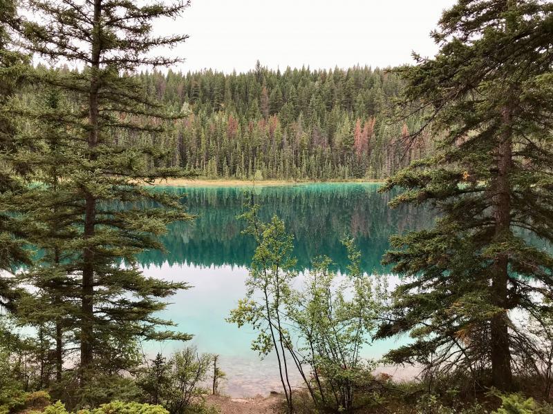Rondreis Canada/USA 18-39 jaar