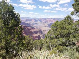 Gezinsrondreizen Nationale Parken